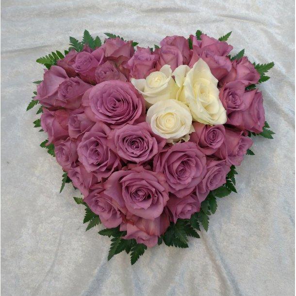 Lys lilla rosehjerte med hvit kontrast