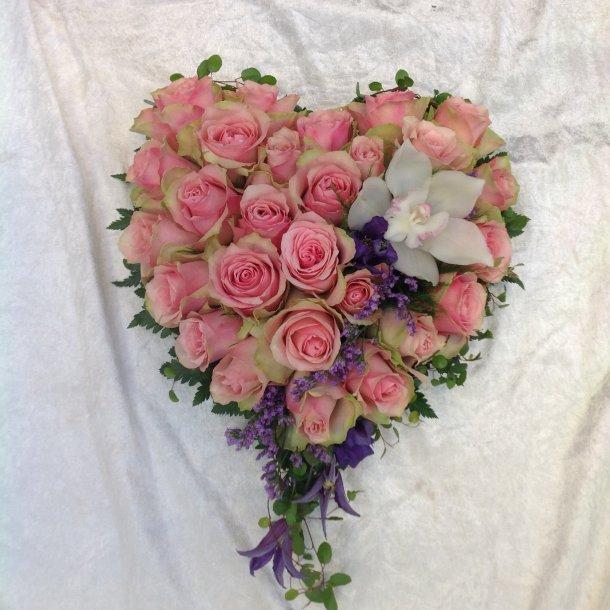 Rosa rose hjerte med lilla kotrast