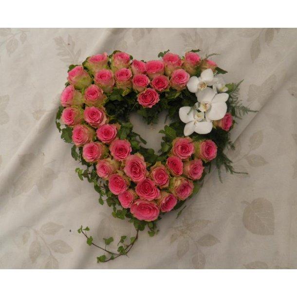 Rosa åpent hjerte